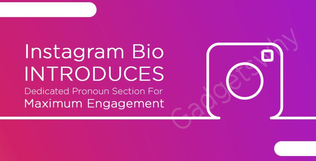 Instagram Bio Introduces Dedicated Pronoun Section